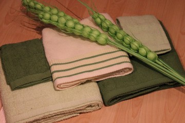Towel (166)