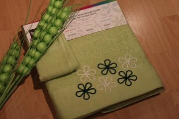 Towel (172)